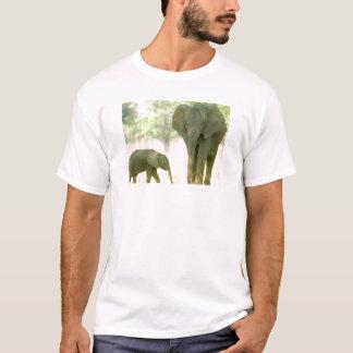 T-shirt Pourquoi les animaux sont supérieurs