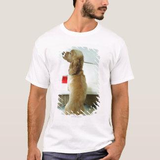 T-shirt Poursuivez la position sur un divan avec un cadeau