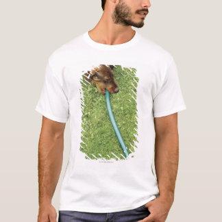 T-shirt Poursuivez mordre sur le tuyau sur l'herbe et le
