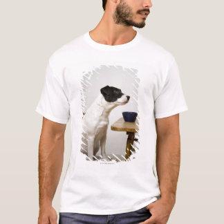 T-shirt Poursuivez se reposer sur une chaise devant une