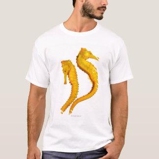 T-shirt Pousse de deux hippocampes sur un arrière - plan