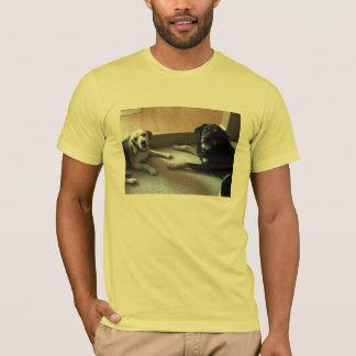 T-shirt présagé et Chester