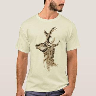 T-shirt Pronghorn - Antilocapra americana