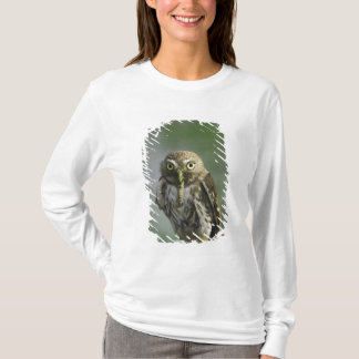 T-shirt Pygmée-Hibou ferrugineux, brasilianum de