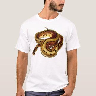 T-shirt Python de boule d'araignée