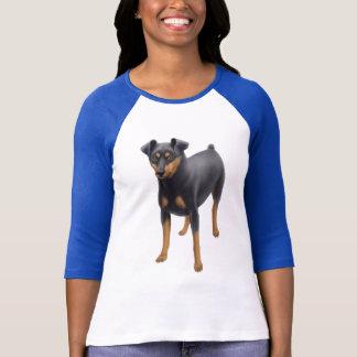 T-shirt Raglan Jersey de Pinscher miniature