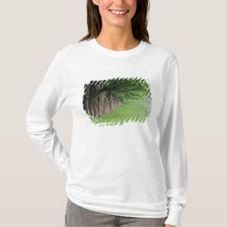 T-shirt Rangée majestueuse des arbres, Louisville,