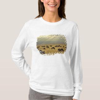 T-shirt Rayons de soleil et gnou, taurinus de Connochaetes