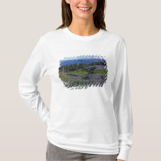 T-shirt Région sauvage des Etats-Unis, Washington Mt.