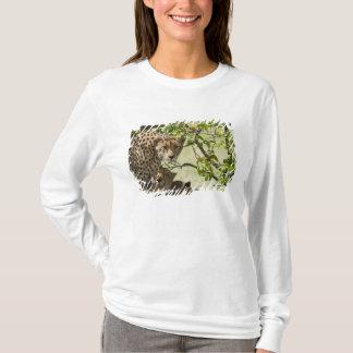 T-shirt Repos de guépards à la nuance