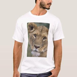 T-shirt Réservation de jeu de l'Afrique, Kenya, Mara de