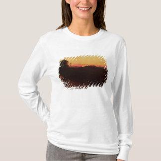 T-shirt Réunion de Jacob et d'Esau