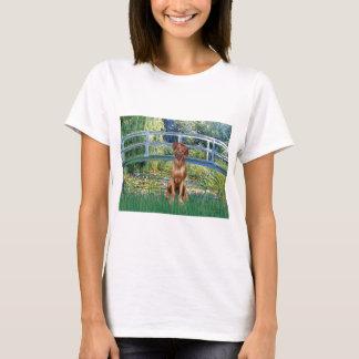 T-shirt Rhodesian Ridgeback 1 - pont