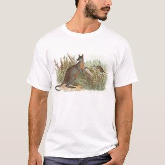 T-shirt Richard Lydekker - wallaby à queue noire