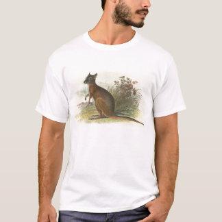 T-shirt Richard Lydekker - wallaby de Dama