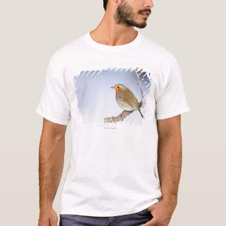 T-shirt Robin était perché sur une branche en hiver
