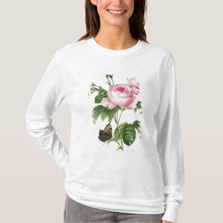 T-shirt Rosa Centifolia