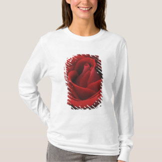 T-shirt Rose rouge de floraison