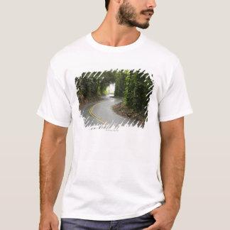T-shirt Routes d'enroulement par la forêt tropicale, île