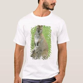 T-shirt Rufogriseus à col rouge de wallaby, de Macropus),