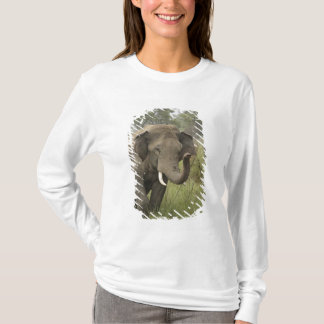 T-shirt Salutation éléphant indien/asiatique, Corbett