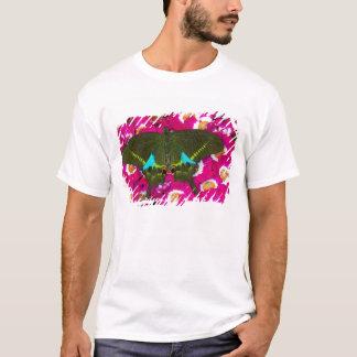 T-shirt Sammamish, papillon tropical 16 de Washington