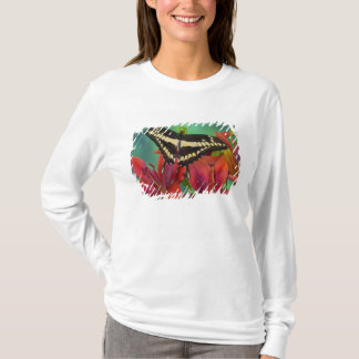 T-shirt Sammamish, papillon tropical 37 de Washington