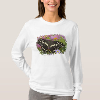 T-shirt Sammamish, papillon tropical 8 de Washington