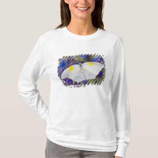 T-shirt Sammamish, Washington. Papillons tropicaux 13