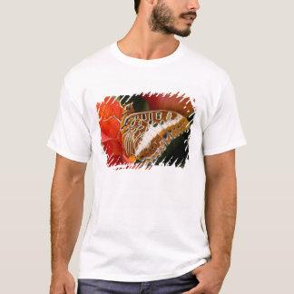 T-shirt Sammamish, Washington. Papillons tropicaux 17