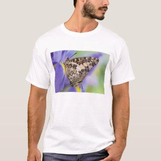 T-shirt Sammamish, Washington. Papillons tropicaux 22