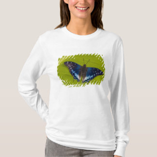 T-shirt Sammamish, Washington. Papillons tropicaux 24