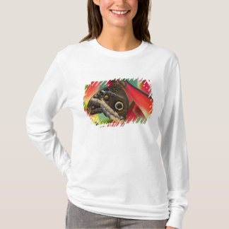T-shirt Sammamish, Washington. Papillons tropicaux 32