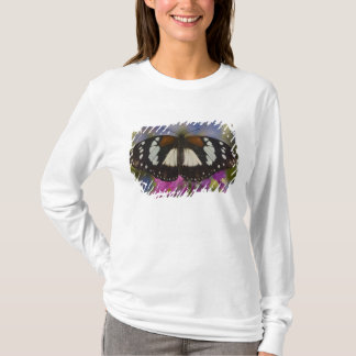 T-shirt Sammamish, Washington. Papillons tropicaux 41
