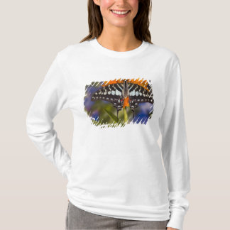 T-shirt Sammamish, Washington. Papillons tropicaux 50