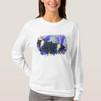 T-shirt Sammamish, Washington. Papillons tropicaux 56