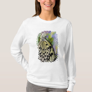 T-shirt Sammamish, Washington. Papillons tropicaux 6