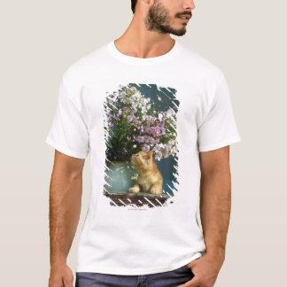 T-shirt Séance de chat sans compter que le vase à fleur