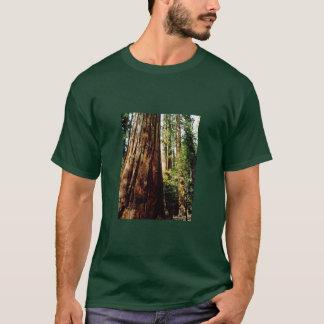 T-shirt Séquoias de Yosemite