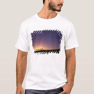 T-shirt Silhouette de caravane de chameau sur le désert à