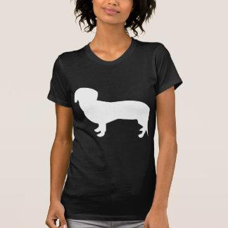 T-shirt Silhouette de teckel