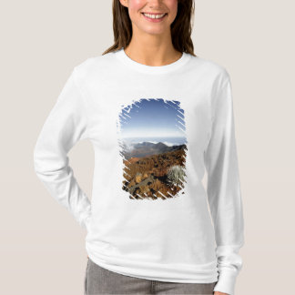 T-shirt Silversword sur la jante de cratère de Haleakala