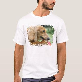 T-shirt Singapour 10