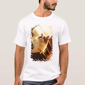 T-shirt Singapour 6