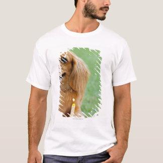 T-shirt Singapour 8