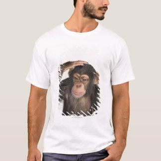 T-shirt Singe rayant sa tête