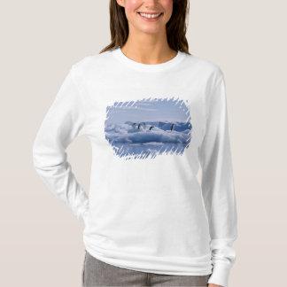 T-shirt Six adeliae de Pygoscelis de pingouins d'Adelie)