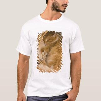 T-shirt Sommeil tigré orange dans le panier