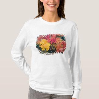 T-shirt South Pacific, Fidji, récif d'arc-en-ciel dans
