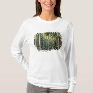 T-shirt South Pacific, Polynésie française, Bora Bora.
